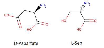 D-Aspartate and L-Sep Molecules